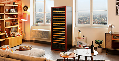 EuroCave Première range - Wine cabinet one temperature to mature wine only.