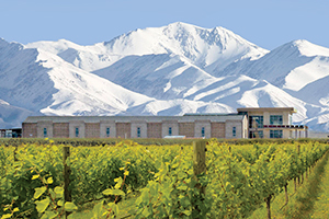 Wine&Style - Picture of the domaine Bousquet, Argentina's leading organic wine producer.