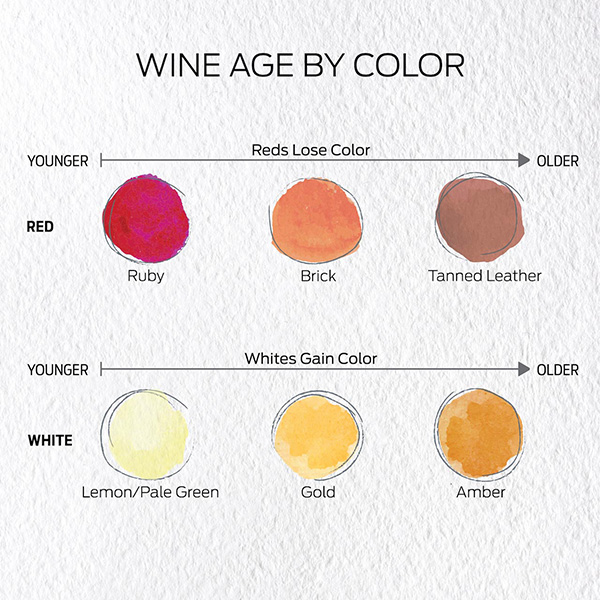 Wine color depending on wine age. The color of white or red wines changes if they are young or aged.