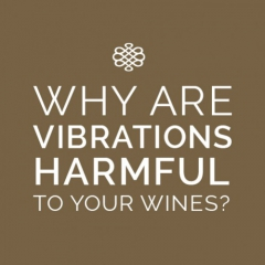 [ SCIENTIFIC STUDY ] Is your wine effectively protected from vibration?